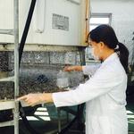 미추홀구, 여름철 감염병 예방 총력
