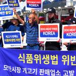 """동물권 단체 케어 """"모란시장 개고기 판매업소 5곳 고발 추진"""""""