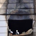 직원들 연기·불길 보고 화재 알아… 뒤늦게 대피