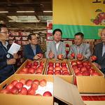 농협 김병원 회장, 구리공판장·안성농식품물류센터 찾아 가격동향 점검
