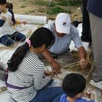 화성시, 오는 29일  '비봉땅 갈대숲 축제' 개최