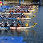 즐길거리 넘치는 아라문화축제 6일 개막