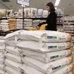 쌀 생산량 급감에 쌀값 고공행진
