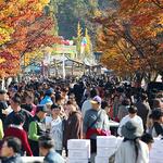 제20회 이천쌀문화축제 성황리 폐막