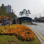 의왕시, 도시숲 늘려 미세먼지 줄인다