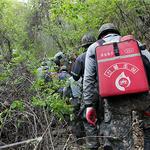 산림부(富)군 가평군, 자산지키기 '빨간불 켜다'