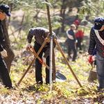 계양구, 주민 등 300여 명 모여 숲 가꾸기 체험·산불예방 캠페인 가져