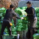 김장철 분주한 농산물도매시장