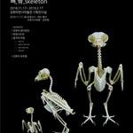강화탐조클럽 17일부터 강화자연사박물관서 정기 전시회