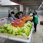 하남시 위례동서   직접 재배 배추 300여 포기 사랑의 김장 전달