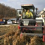 포천시, 소흘농협·영중 콩 작목반에  농기계 전달