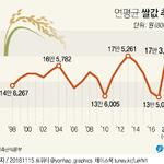 """쌀값 1년새 30% 껑충…""""너무 올라"""" vs """"적정가 과정"""""""