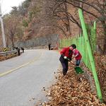 양평군 강하면, 월동준비 위한 주요도로변 환경정비 만전