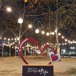 안양시, 중앙공원·삼덕공원 오색 불빛 새 단장