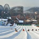에버랜드서 '짜릿한 겨울의 마법' 즐길 시간!
