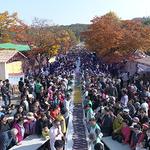이천쌀문화축제 '7년 연속 최우수축제' 선정