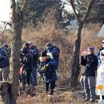 국제두루미재단 아치볼드박사 일행 연천 DMZ일원 두루미 월동지 관찰 위해 방문