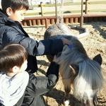 한국마사회 말박물관, 어린이 체험 프로 '마구간 옆 박물관' 접수