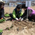 의왕시,  '2019 행복가꿈 주말농장' 운영