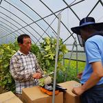 양주시 농기센터,  총 6회에 걸쳐  고소득 작물인 교육