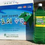 남양주 축령산·천마산 일대 '봄의 진액' 고로쇠 채취 한창