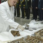 한국전쟁 참전 중국군 유해 고국 품으로…