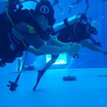 중부해경, 수중 수색구조 역량강화 훈련 실시
