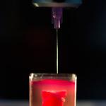 3D 프린팅으로 만들어지는 인공심장