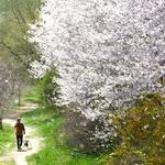 포근한 봄기운에 가벼운 발걸음