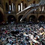 런던 자연사박물관에 드러누운 '기후변화 방지' 시위대