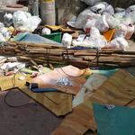'2820개의 눈' 피해 연신 쓰레기 투기