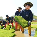 해군 2함대, 농작물 파종기 맞아 오는 20일까지 일손돕기