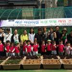 인천 부평5동 어린이들 옥상텃밭 채소 수확