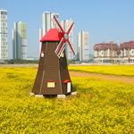 텅 빈 땅, 활짝 핀 꽃들로 '인기만발'
