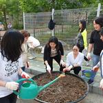 인천 남동구 만수2동, 도시 속 작은 정원 조성