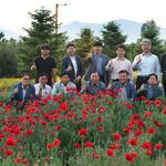 가평군, 자라섬 남도 일원 5만㎡ 꽃테마공원 조성