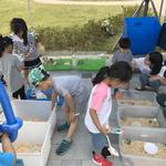 평택시,'평택농(農)의 삼색(三色)팜파티' 행사 개최