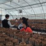 우수한 버섯종균 만드는 기능사 된 하루 계양 학교밖청소년센터 진로 체험 진행