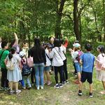 남양주시, '숲이 좋아, 광릉숲 체험' 프로그램 실시