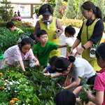 의왕시, 초·중 15곳서  '스쿨팜 도시농부 체험활동'  큰 호응