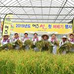 여주시,올해 첫 대왕님표 여주쌀 벼베기 행사 개최
