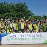 군포시 범농협 농촌사랑봉사단,부곡동 포도농가 일손돕기