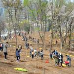 성남시, 노후차량 친환경화 + 도시숲 확장… 쾌적한 도시 조성 박차
