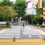과천시,  '스몸비' 교통사고 예방하는 '바닥신호등' 설치
