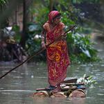 '바나나 나무통' 뗏목 젓는 인도 아삼 주민