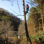수원국유림관리소, '숲 가꾸기 패트롤' 운영