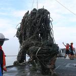 해군 연평도 어장 해저 방치된 폐기물 수거작전 펼쳐