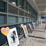 양평군, 저출산 극복 위한 관내 아기사진전 개최
