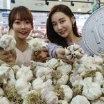 국산 통마늘 1개에 100원… 롯데마트, 소비 촉진 행사