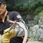 매일 '덥다 더워' 말하던 찰나 경기북부 227차례나 뱀 출몰